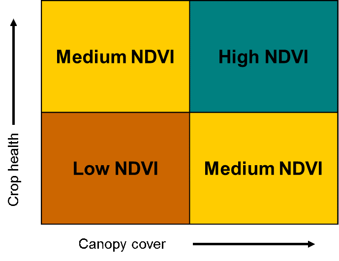 NDVI vs Crop Health and Canopy Cover